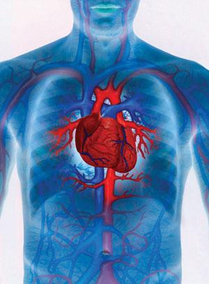 Хроническая левосторонняя сердечная недостаточность -