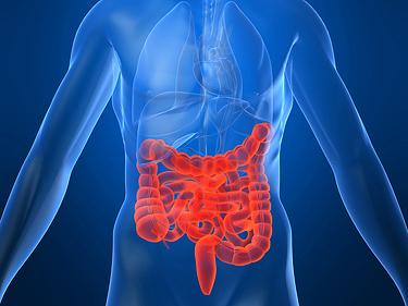 Что такое болезнь Крона — признаки и симптомы заболевания