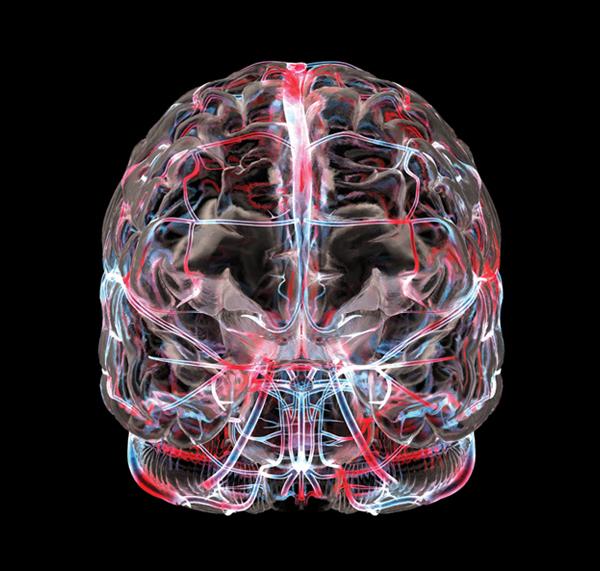 Дисциркуляторная энцефалопатия головного мозга