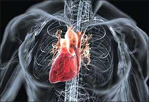 Аортальный клапан сердца диагноз