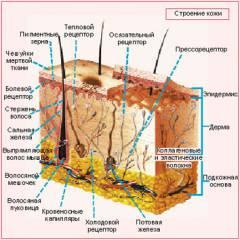 Изображение - Рожистое воспаление голеностопного сустава sm_761272001410449152