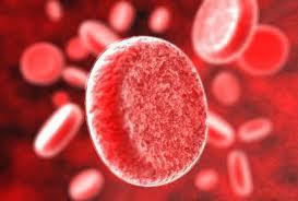 Что такое анемия крови